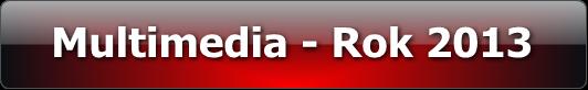 rok_2013_multimedia