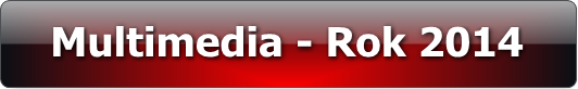 rok_2014_multimedia