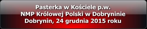 pasterka_dobrynin_2015_multimedia