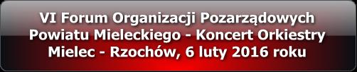 vi_forum_organizacji_pozarzadowych_multimedia_2016