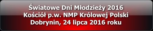 sdm_2016_dobrynin_multimedia_2016