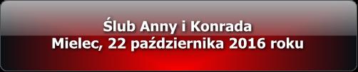 slub_anny_i_konrada_multimedia_2016